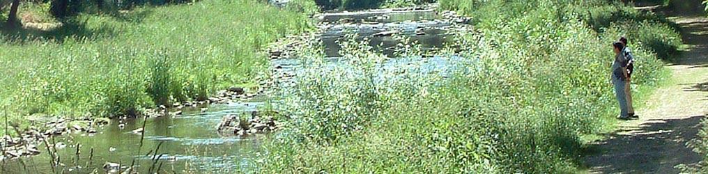 Symbolbild: Flusslandschaft bei Pforzheim