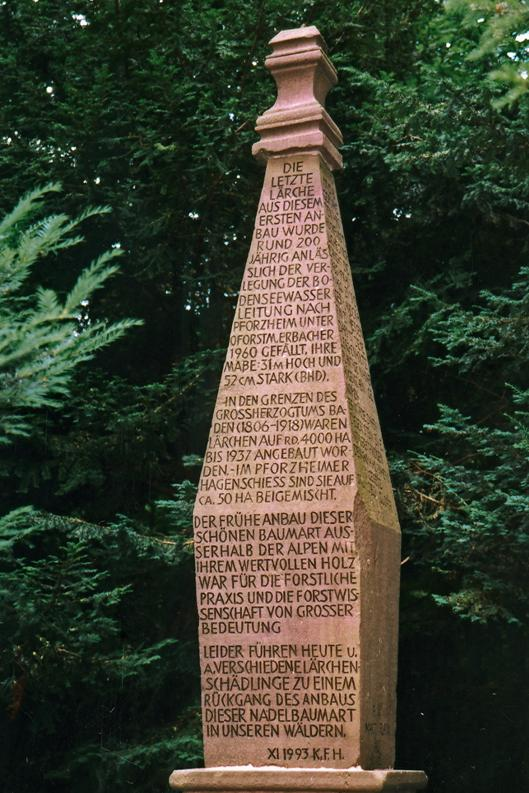 Lärchenstein im Hagenschieß erinnert an Carl Albrecht von Gaisberg