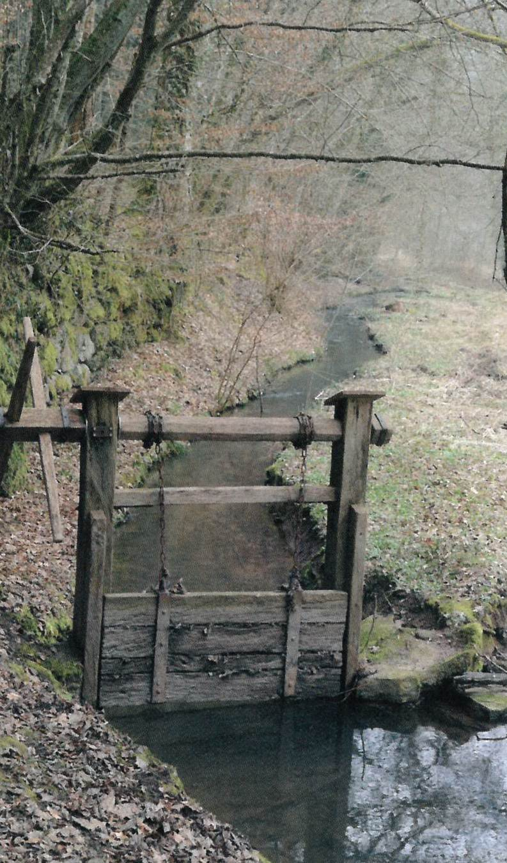 Wiesenbewässerung im Würmtal